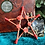 Thumbnail: Pentagram - Red with Red Roses - Small
