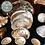 Thumbnail: Abalone Shell - 10cm (4 Inch)