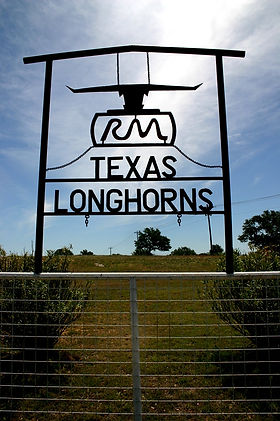 Red McCombs Texas Longhorns Ranch in Johnson City