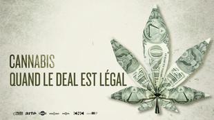 CANNABIS, QUAND LE DEAL EST LEGAL