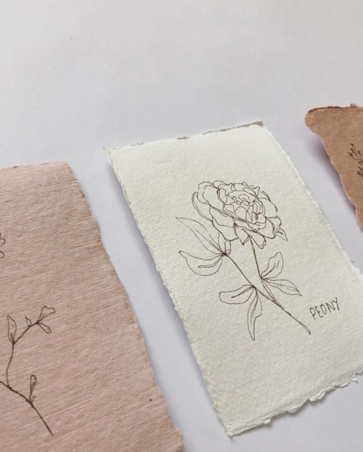 Floral illustration