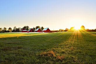 barn-cropland-dawn-1198507.jpg