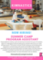 Kimnastics Summer Camp Position 2019.png