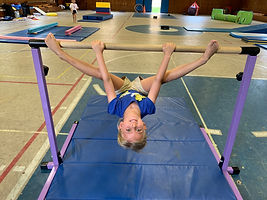 Horizontal Bar 5.JPG