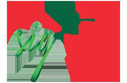 logo-sig-mv.png