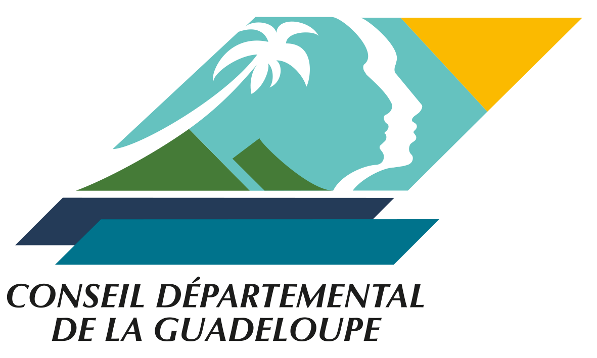 CONSEIL DEPARTEMENTAL.png