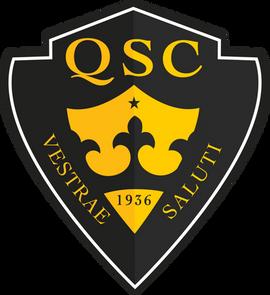 QSC-Black&YellowLogo.png