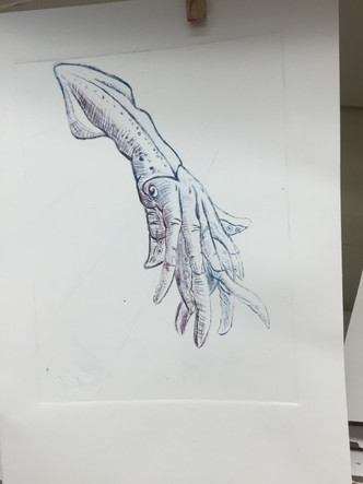 Hand and Squid