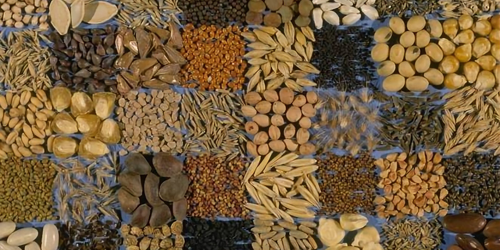 Banking the World's seeds.