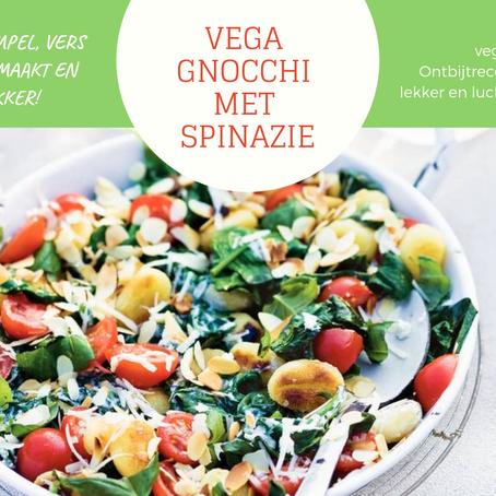 Vega Gnocchi met Spinazie