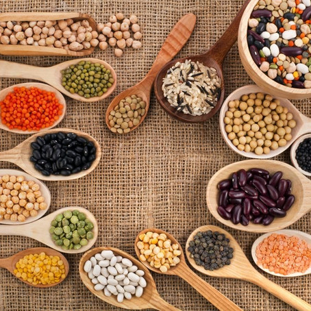 Plantpower; plantaardige proteïne.