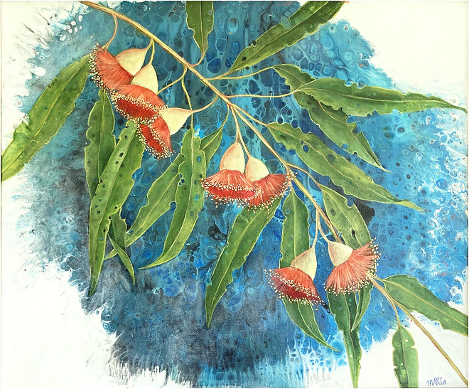42. Eucalyptus Rosea $390 (2).jpg
