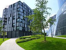 Modernes Bürogebäude mit Park und jungem Baum