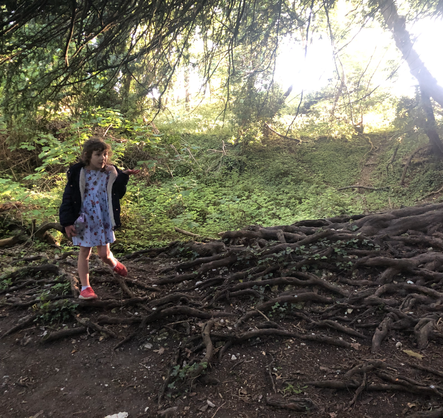 Katherine and the Trees.HEIC