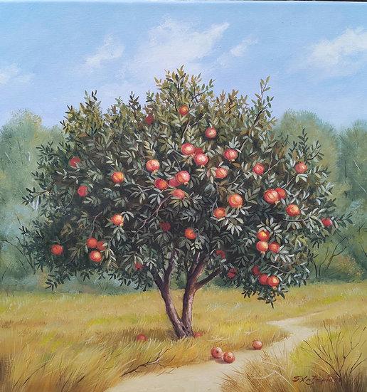 Pomegranate by Xazaridis Original Handpainted Oil On Canvas 50 X 50