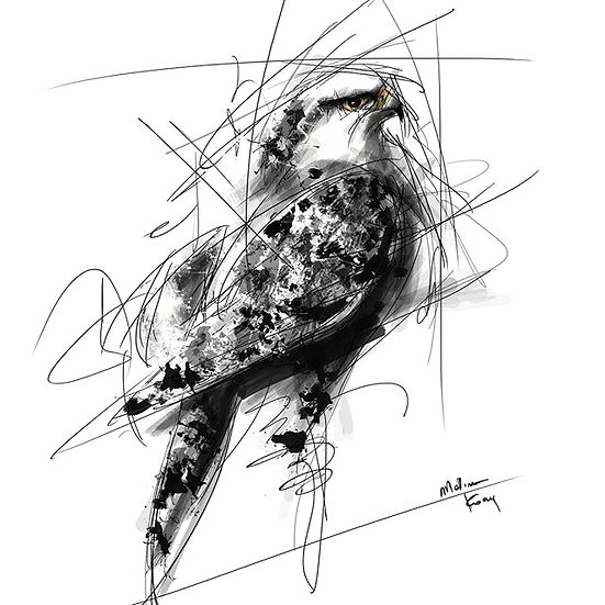 Bird By M.Koan