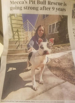 Mecca's Pit Bull Rescue paper.jpg