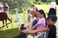 Panmure Basin Family Fun Day (9).JPG
