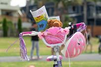Teddy in bike basket with PBA Newsletter