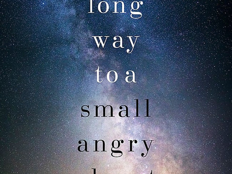 WL Reader's Review: A Long Way to a Small, Angry Planet