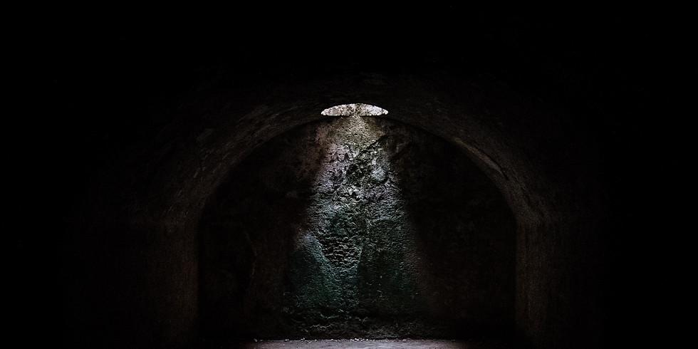 One-shot: Terror in the Elvish Quarter