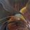 Thumbnail: Surrender oil on canvas