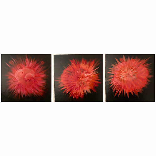 Anemone Triptych - original oil paintings