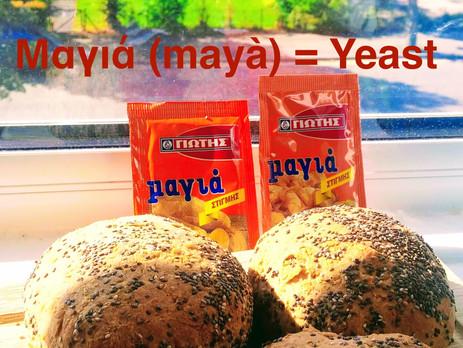 Μαγιά (mayà) : Yeast