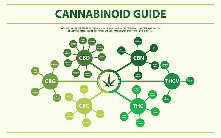Cannabiniod map.png