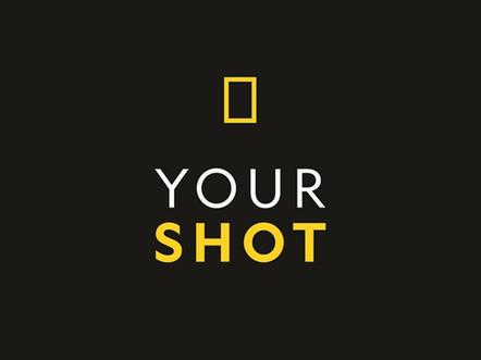 your_shot.jpeg