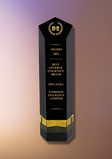 Picture 3 - GBM Award.png
