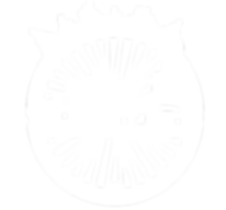 Velocity Logo 2019 White_Transparent.png