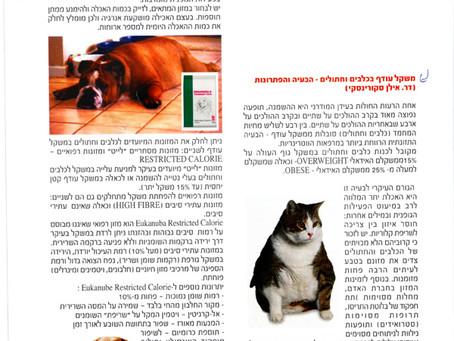 משקל עודף בחיות-הבעיה ופתרונות