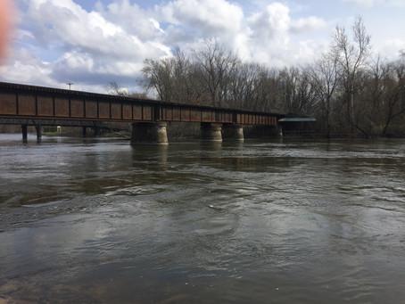 Spring Along a River