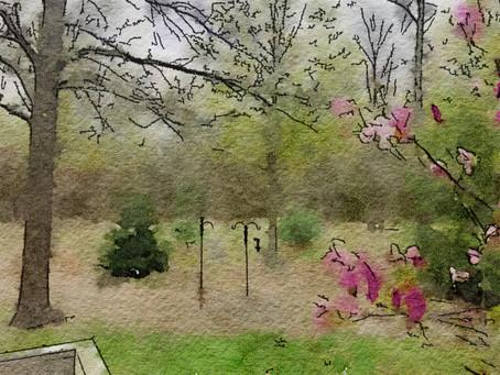 Spring's Liminal May