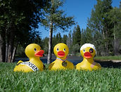 Duck Race-8574  - Arnie Photo (3).jpg