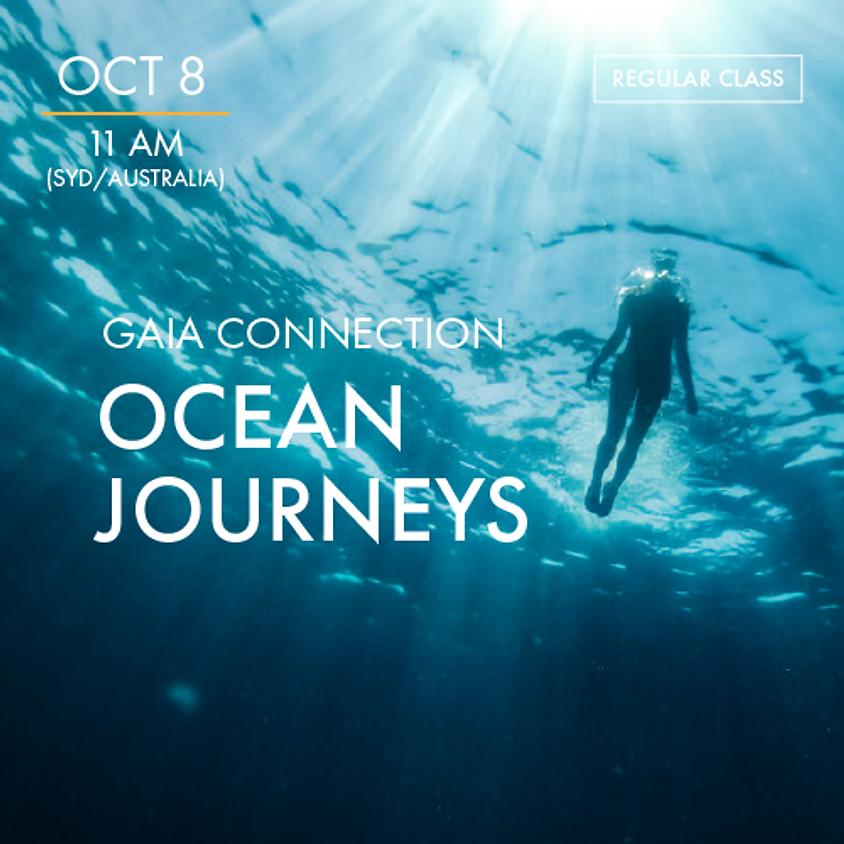 ReBoot - GAIA CONNECTION - Ocean Journeys