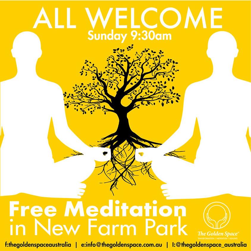 Meditation In New Farm Park (BRIS)