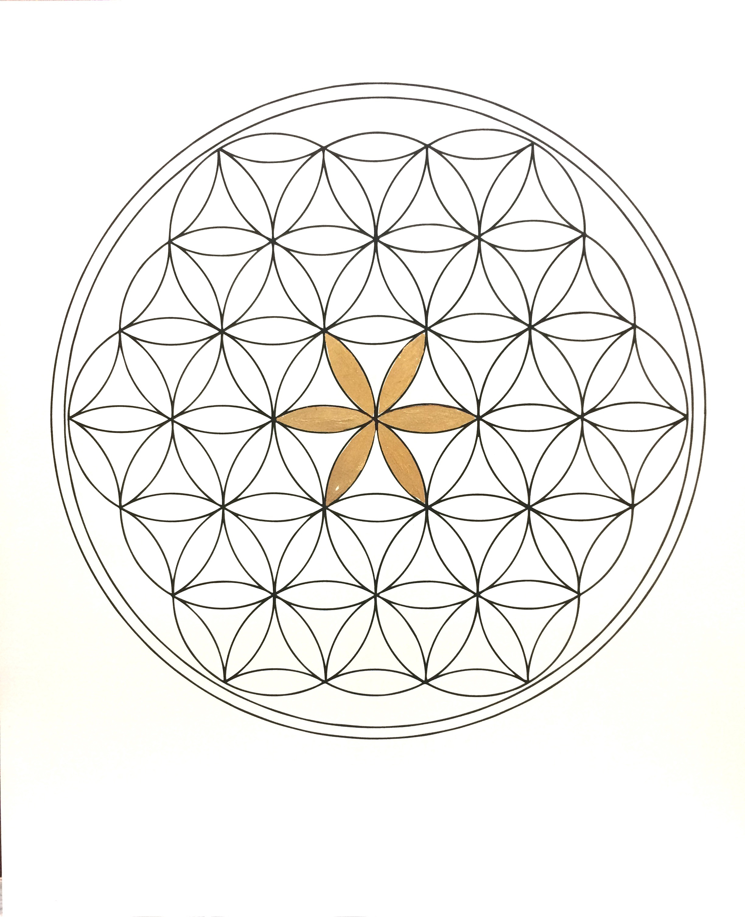 Golden Flower of Life (line)
