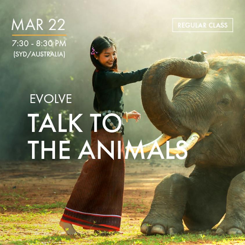 EVOLVE - Talk to the Animals