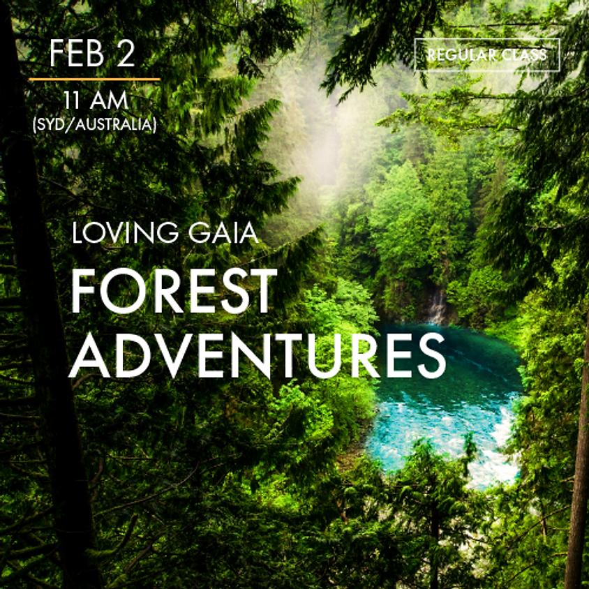 LOVING GAIA - Forest Adventures
