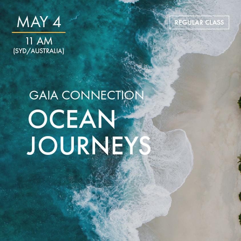 ReBoot - Gaia Connect - Ocean Journey's