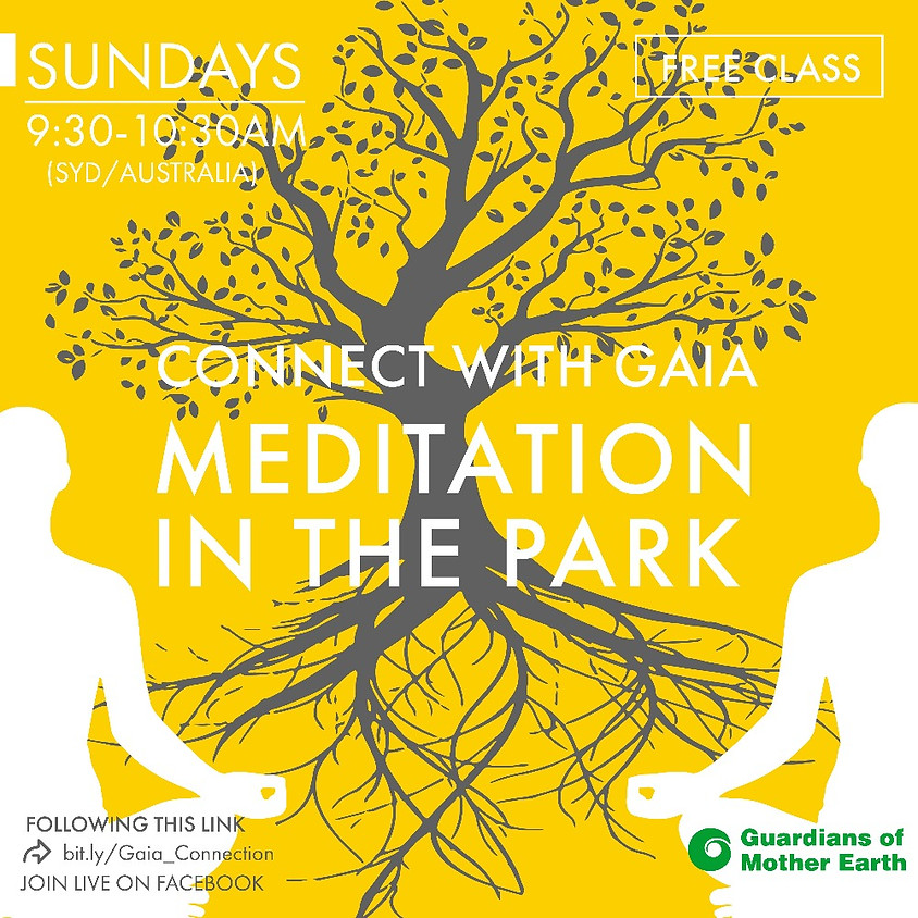 Meditation In The Park- ONLINE