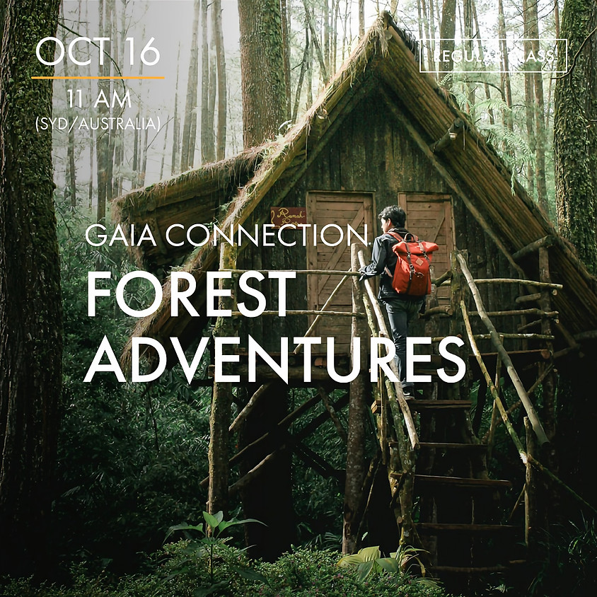 ReBoot - GAIA CONNECTION - Forest Adventures