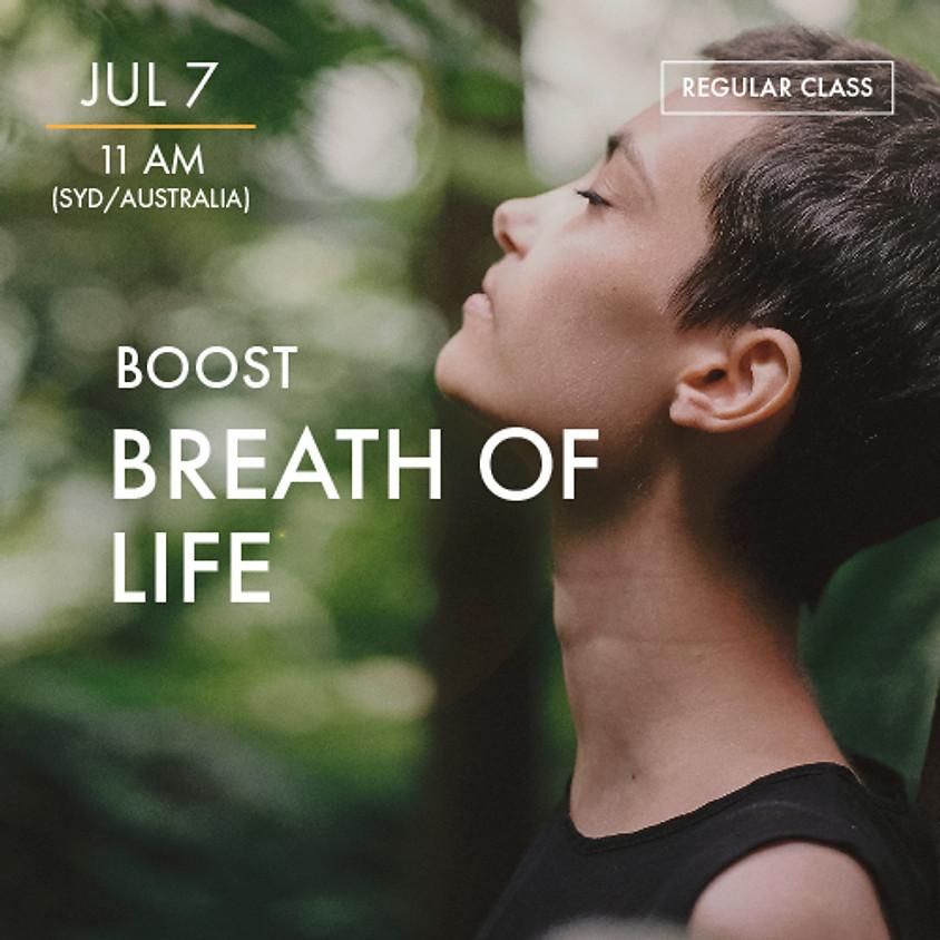 ReBoot - BOOST - Breath of Life