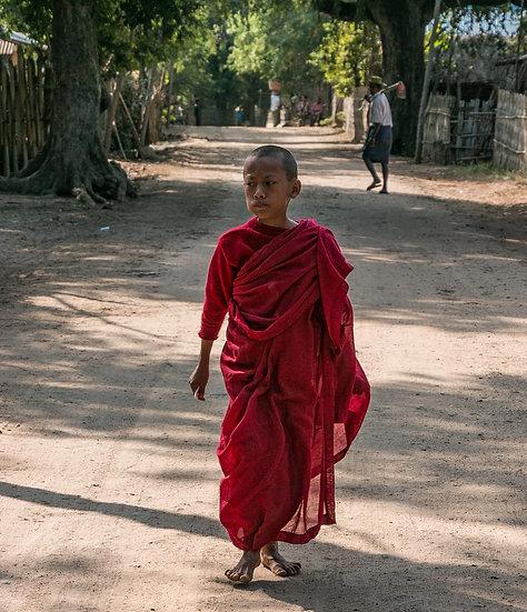 A Novice Monk