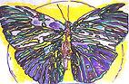 2019- Globe&Butterfly-woodcut_ink on pap
