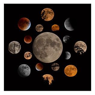 1_188_ Moon Layout_BIG_Smart Object.jpg