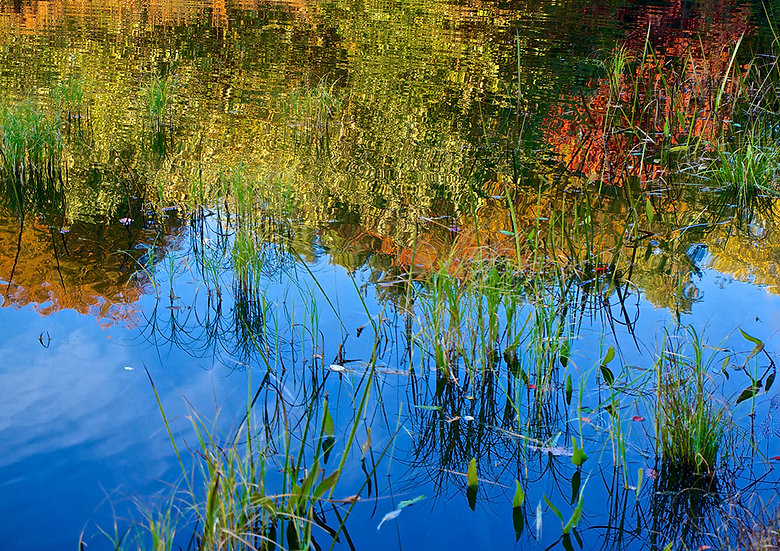 Reflections, 2014, Photography