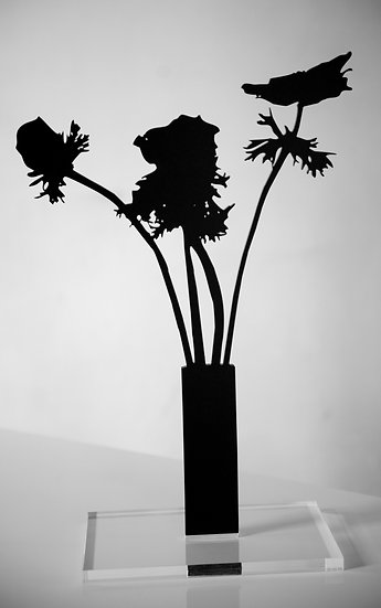 Anemones, 2019, Black Matte Acrylic